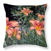 Beautiful Tiger Lilies Throw Pillow