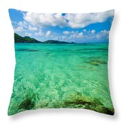 Beautiful Turquoise Water Throw Pillow