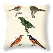 Beautiful Und Strange Foreign Birds Throw Pillow