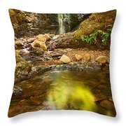 Beautiful View Of Upper Falls Located In Uvas Canyon County Park Forest Reflection Throw Pillow