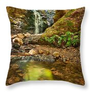 Beautiful View Of Upper Falls Located In Uvas Canyon County Park. Throw Pillow
