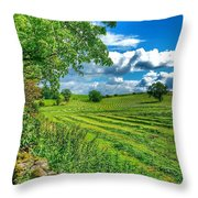 Summer View In Yorkshire Throw Pillow