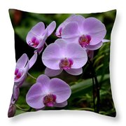 Beautiful Violet Purple Orchid Flowers Throw Pillow