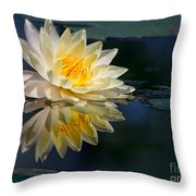 Beautiful Water Lily Reflection Throw Pillow