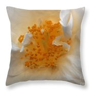 Beautiful White Rose Throw Pillow