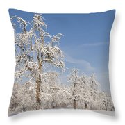 Beautiful Winter Day With Snow Covered Trees And Blue Sky Throw Pillow