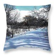 Beautiful Winter View Throw Pillow