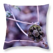 Beauty After Bloom Throw Pillow