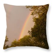 Beauty After The Storm Throw Pillow