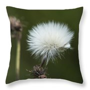 Beauty Among The Thistles Throw Pillow