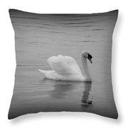 Beauty And Elegance 2 Throw Pillow