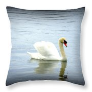 Beauty And Elegance Throw Pillow