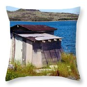 Beauty And The Beast - Buttercups And Old Shed Throw Pillow