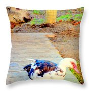 I Might Be The Beast But Are You Really The Beauty  Throw Pillow