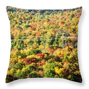 Beauty And The Grid Throw Pillow