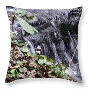 Beauty And The Rapids Throw Pillow