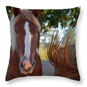 Beauty And The Swish Throw Pillow