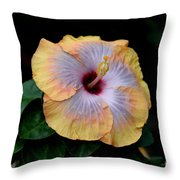 Beauty Before Age Throw Pillow