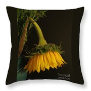 Beauty Bows Throw Pillow