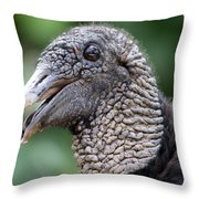 Beauty Boy Throw Pillow