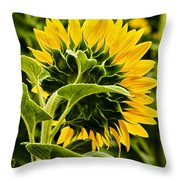 Beauty From The Back Throw Pillow by Christi Kraft