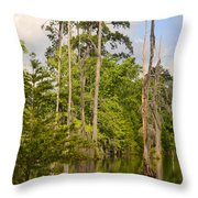 Beauty In A Swamp Throw Pillow