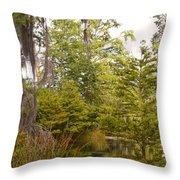 Beauty In  A Swamp Ll Throw Pillow