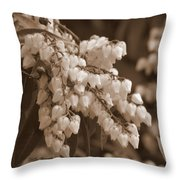 Beauty In Abundance Throw Pillow
