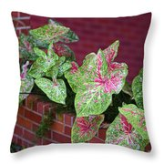 Beauty In Decorative Foliage Throw Pillow
