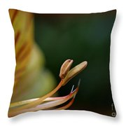 Beauty In Her Soul Throw Pillow