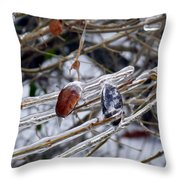 Beauty In Ice Throw Pillow
