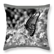 Butterfly Beauty In Nature Throw Pillow