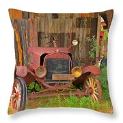 Beauty In Old Age Throw Pillow