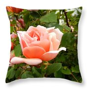 Beauty In Pink Throw Pillow