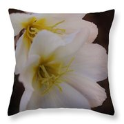 Beauty In The Canyon 2 Throw Pillow