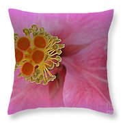 Beauty In The Detail Throw Pillow