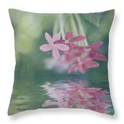 Beauty In The Mirror Throw Pillow