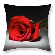 Beauty In The Spotlight Throw Pillow by Mariola Bitner