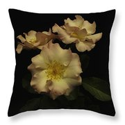 Beauty In Three Throw Pillow
