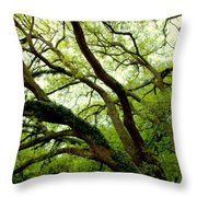 Beauty In Time Throw Pillow