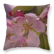 Beauty Is A Dew Drop On A Flower Throw Pillow