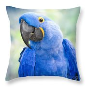 Beauty Is An Enchanted Soul Throw Pillow