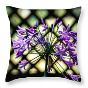 Beauty Lines Throw Pillow