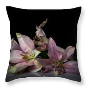 Beauty Of Decaying Lilies Throw Pillow
