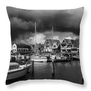 Beauty Of Holland 1 Throw Pillow