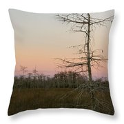 Beauty Of Lonesome Throw Pillow