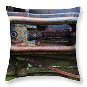 Beauty Of Rust 4 Throw Pillow