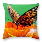 Beauty Of Shannon Throw Pillow