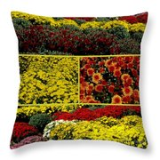 Beauty Of The Fall Mums Throw Pillow