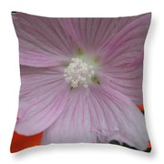 Beauty Of The Hollyhock  Throw Pillow